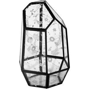 nábytok KILLSTAR Crystalline Terrarium