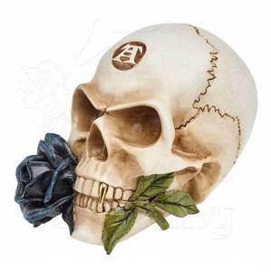 dekorácia ALCHEMY GOTHIC - Alchemist Skull with Rose - V44