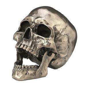 dekorácia Cranius - D4481N9