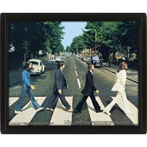 obraz 3D Beatles - EPPL71252